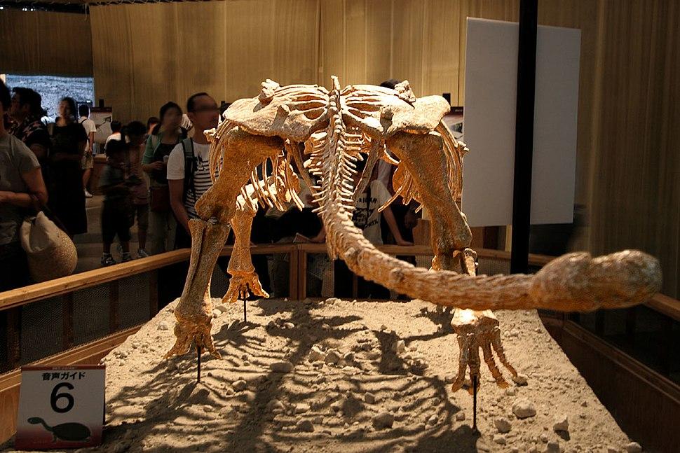 Pinacosaurus from behind