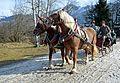 Pinzgauer Brauchtums- und Trachtenschlittenfest, 2. Februar 2014, 12.jpg