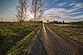 Pirkanmaa, Finland - panoramio (155).jpg