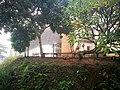 Pista coberta de Tocaña i vegetació.jpg