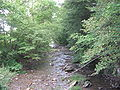 Plunketts Creek in Proctor.JPG
