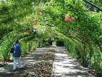 Point Defiance Park - Rose Garden at Point Defiance