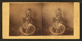 Pomona (a bowl of fruit). Contribution of Mr. J.E. Mitchel to Horticultural Exhibition, 1860, from Robert N. Dennis collection of stereoscopic views.png