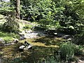 Pond in Kamado Shrine 3.jpg
