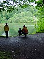 Ponds at Drum Manor Park - geograph.org.uk - 112553.jpg