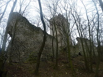 Győr (genus) - The ruins of Pottenburg Castle in Lower Austria. It was built by Pat I, during his service as head of Pozsony County