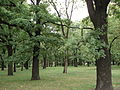 Poznań Park Manitiusa.JPG
