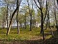 Praha, Břevnov, Míčova, park 02.jpg