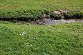 Prairie de Jaumeron à Gif-sur-Yvette le 1er avril 2015 - 25.jpg