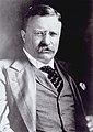 President Theodore Roosevelt.jpg