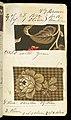 Printer's Sample Book (USA), 1882 (CH 18575251-50).jpg