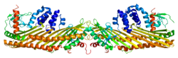 Protein CAPZB PDB 1izn.png