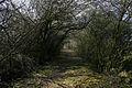 Public footpath to Loncliffe Golf Club - geograph.org.uk - 378320.jpg