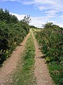 Public footpath to New Moor House - geograph.org.uk - 547435.jpg