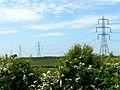 Pylons to the left of them ... - geograph.org.uk - 182883.jpg