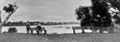 Queensland State Archives 381 Maroochy River at Maroochydore c 1931.png