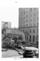 Queensland State Archives 4222 Bauhinia Tree George Street Brisbane 1949.png