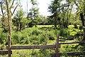 Réserve naturelle Marais Lavours Aignoz Ceyzérieu 14.jpg