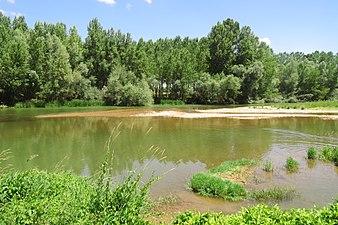 Río Esla en la provincia de Zamora.jpg