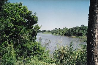 Río Negro (Chaco Province) - View of the Río Negro near Resistencia, Chaco