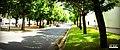 Rúa dos Irmandiños, Ferrol - panoramio.jpg