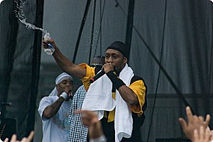 RZA - RZA performing with Wu-Tang at the Virgin Music Festival.