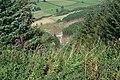 Radnor Forest - Bache Hill - geograph.org.uk - 694359.jpg