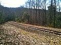 RailroadTracksLakeZoarPaugussettTrail.JPG