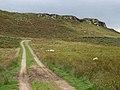 Ravensheugh Crags - geograph.org.uk - 244727.jpg