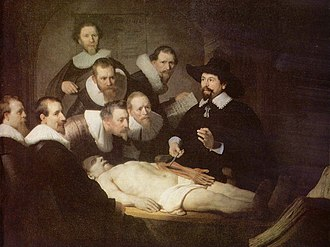 Outline of human anatomy - The Anatomy Lesson of Dr. Nicolaes Tulp, by Rembrandt; depicts an anatomy demonstration using a cadaver.