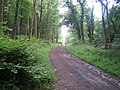 Restricted byway, Stony Hill - geograph.org.uk - 915754.jpg