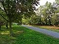 Reutlinger Straße Pirna (44490272062).jpg