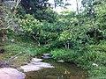 Riacho Zona do Côrrego dos Buris, Camacan, Bahia (Caminho Fazenda Altamira) - panoramio.jpg