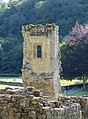 Rievaulx Abbey Ruin.jpg