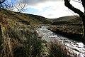River Barle - geograph.org.uk - 633932.jpg