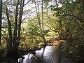 River Bovey above Parke - geograph.org.uk - 1559575.jpg