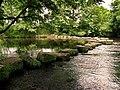 River Derwent - geograph.org.uk - 857681.jpg
