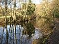 River Teign - geograph.org.uk - 1772776.jpg