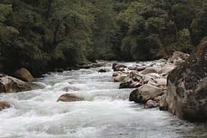 River at Mechuka valley.jpg
