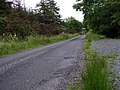 Road at Derrynasell West - geograph.org.uk - 894932.jpg
