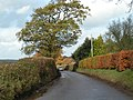 Road to Langford - geograph.org.uk - 1589136.jpg