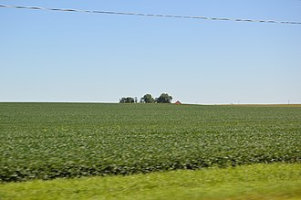 Roanoke Township, Woodford County, Illinois - Fields on Illinois Routes 116/117