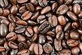 Roasted Coffee Beans Texture.jpg