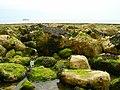 Rocks and Boulders - geograph.org.uk - 822220.jpg