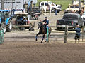 Rodeo race (4609778768).jpg