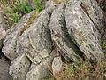 Roihuvuoren-kallio6.JPG