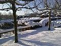 Rosenterrassen im Winter (7).jpg