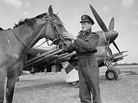 Royal Air Force 1939-1945- Fighter Command CL993.jpg