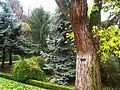 Royal Botanical Garden, Madrid - view 06.JPG