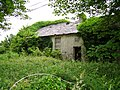 Ruin, Drishane - geograph.org.uk - 244452.jpg